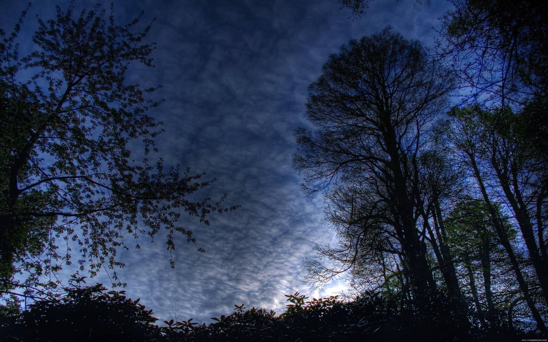 Night Sky Wallpapers Pix 1000